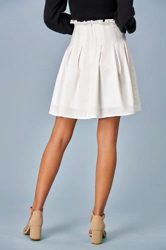 back_Pleats Please {Color} Skirt
