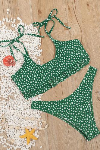 back_Charity Green And Disty Floral Bikini