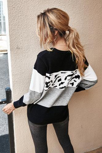 back_Eilene Multicolor Sweater