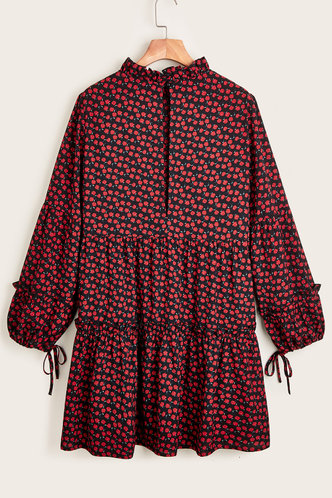 back_Quincy Black And Red Rose Print Dresses