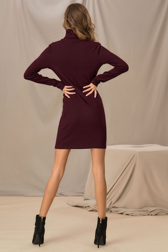 back_Like A Glove Burgundy Bodycon Dress