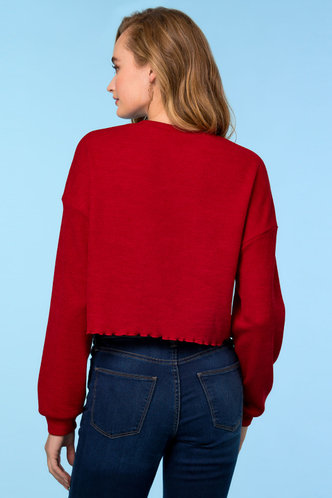 back_Drafty Red Top