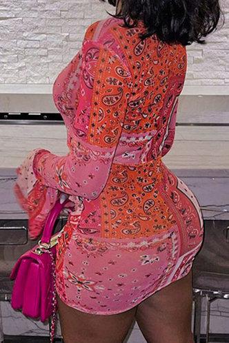back_Alma Eleanore Red Multi Print Plus Size Dress