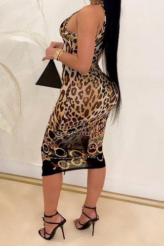 back_Rosemary Eleanore Brown Leopard Print Bikini