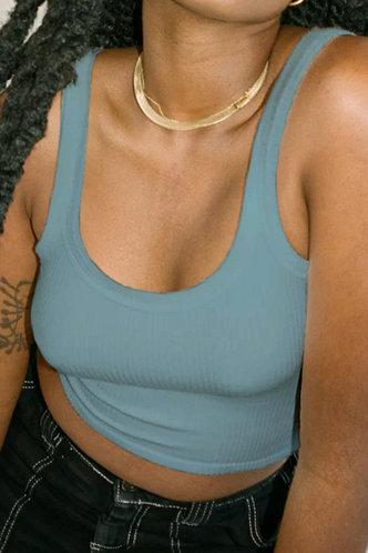 back_Selene Ella Rusty Blue Plus Crop Top