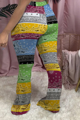 back_Eleanore Elsa Colorblock Paisley Print Pants