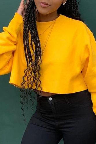 back_Street Crew Neck   Yellow Sweatshirts & Hoodies