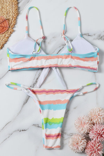back_Vivien Eartha Colorful Striped Bikini