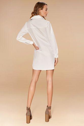 back_Charmante {Color} Mini Dress