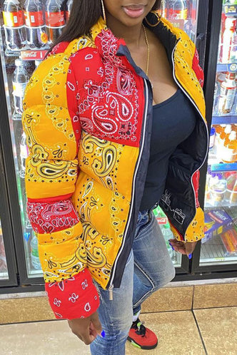 front_Casual Stand Collar Paisley Paisley Print Outerwear
