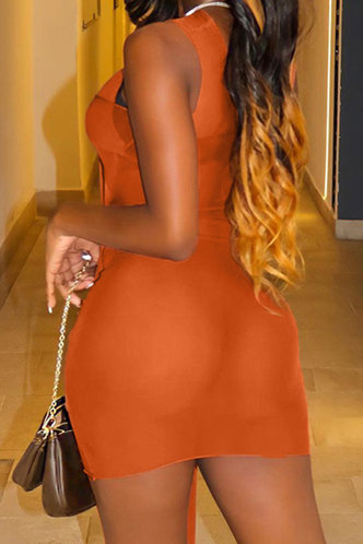 back_Catharine Elsa Rust Red Mesh Bodycon Dress