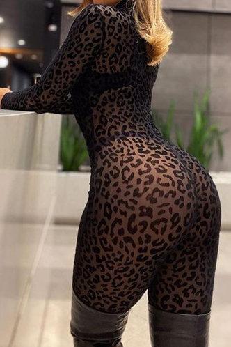 front_Cecilia Karlan Black Plus Jumpsuit