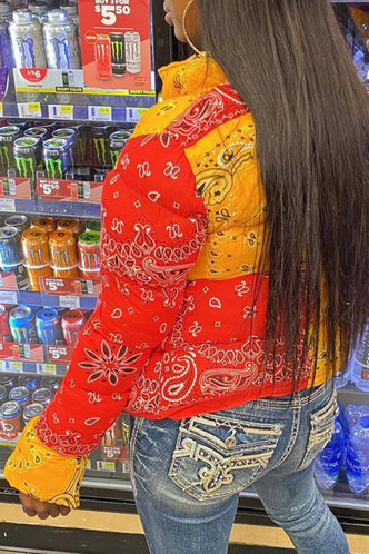 back_Casual Stand Collar Paisley Paisley Print Outerwear