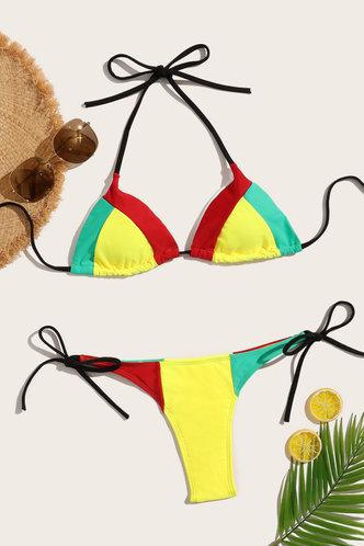 back_Laverne Edwina Colorblock Bikini