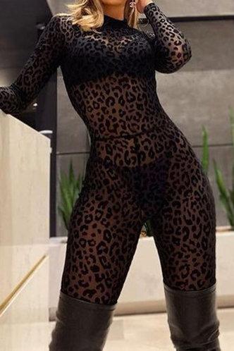 back_Cecilia Karlan Black Plus Jumpsuit