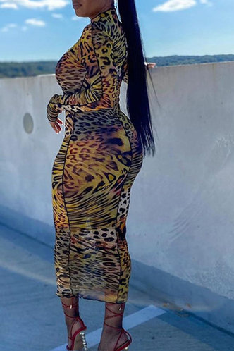 back_Jane Eden Leopard Print Bodycon Dress