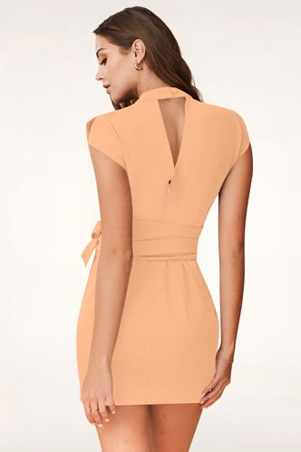 back_Do My Thing {Color} Mini Dress